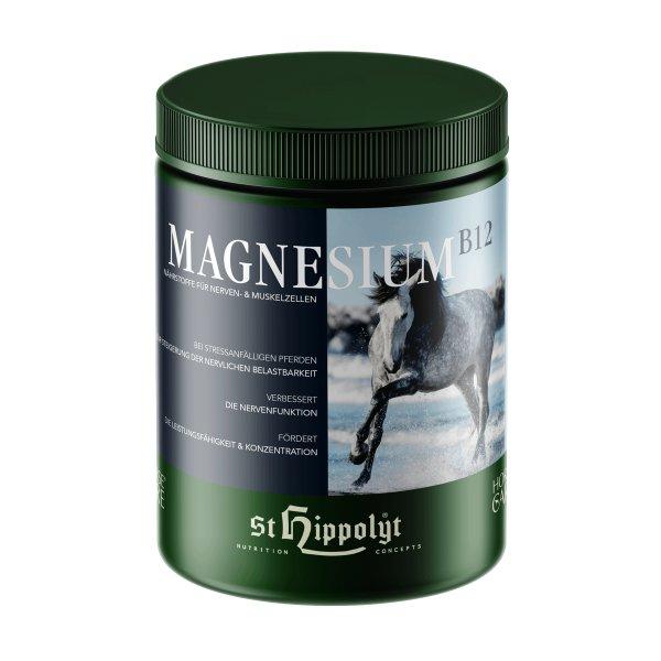 St.Hippolyt Magnesium B 12 für Pferde
